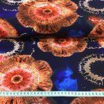 Bomullsjersey afrikansk batikk