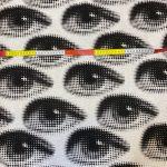 Kanvas med øye